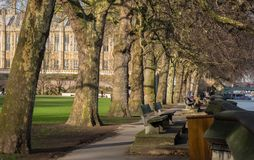 Victoria Tower Gardens, Westmister, Londen, Engeland Stock Foto's