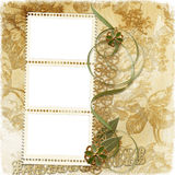 Victorian background with stamp-frames Royalty Free Stock Image
