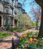 Victorian Brownstones in Boston Back Bay Royalty Free Stock Images