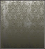 Victorian Etched Mirror Stock Image