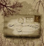Victorian foliage. Victorian mail with aged foliage royalty free illustration