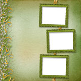Victorian frame with bunch of willows Royalty Free Stock Image