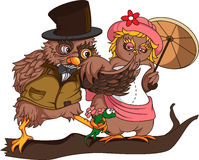 Victorian owl illustration Royalty Free Stock Image