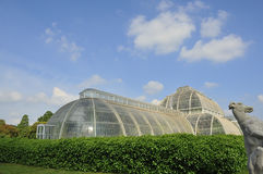 Victorian Palm House Stock Images