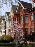 Victorian style houses Royalty Free Stock Images