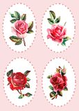Victorian, vintage scraps, set of roses Royalty Free Stock Photos