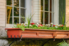 Victorian Window Box. Old window box with geraniums on a stately Victorian home stock images