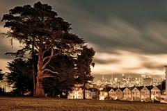 Victorianen utformar hus, Alamo kvadrerar, San Francisco, Kalifornien, Royaltyfri Foto
