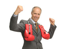 Victorious Businessman Royalty Free Stock Photos