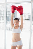 Victorious fit brown haired model in sportswear wearing red boxing gloves Royalty Free Stock Photos