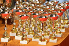 Victorious trophy cups for sports winners on the table Stock Images