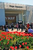 Victory Day banner and many red tulips. Stock Image