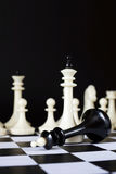 Victory and Defeat. Defeated chess king Stock Photography