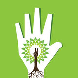 Victory hand make tree inside the tree Stock Photography