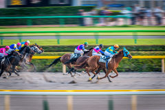 Victory moment of jockey in Tokyo horse racing Stock Photo