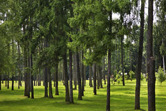 Victory Park in Maladzyechna. Belarus.  Royalty Free Stock Image