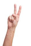 Victory sign isolated on white. Victory hand sign isolated on white background Royalty Free Stock Image