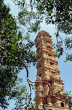 Victory tower. Tower inside chittorgarh fort in rajasthan India Stock Photo
