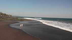 vidéo aérienne du vol 4K de jeunes couples utilisant le bourdon sur la plage avec le sable volcanique noir au temps de coucher du banque de vidéos