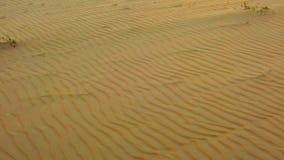 Vidéo animée lente de HD de vue supérieure sur des dunes de sable dans le désert du Sahara, Afrique Il y a de belles vagues sur l banque de vidéos