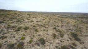 Vidéo d'antenne de paysage de désert du Texas banque de vidéos
