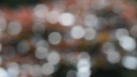 Vidéo de fond brillant abstrait multicolore de bokeh hors focale, balançant par le vent banque de vidéos
