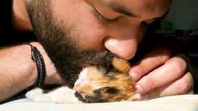 Vidéo drôle Le petit chaton est saisissant et mordant un nez barbu d'homme banque de vidéos