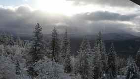 Vidéo du temps HD d'hiver de l'Orégon banque de vidéos