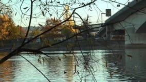Vidéo sous le pont sur la rivière le Rhin l'allemagne banque de vidéos