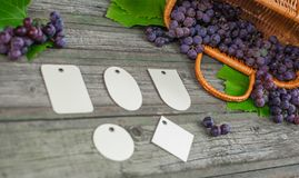 Vid con las uvas y las hojas en la tabla de madera rústica del vintage Sistema de la plantilla de papel de las etiquetas de los d Fotografía de archivo