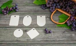Vid con las uvas y las hojas en la tabla de madera rústica del vintage Sistema de la plantilla de papel de las etiquetas de los d Fotografía de archivo libre de regalías