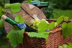 Vid de la cesta de las uvas de la botella de vino Imagen de archivo