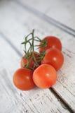 Vid de tomates Imagen de archivo libre de regalías
