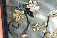 Vid, rama, labrada, hierro Fotos de archivo libres de regalías