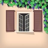 Vid y ventana de uva Imagen de archivo libre de regalías