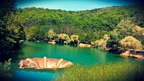 Vida湖比霍尔县罗马尼亚 免版税图库摄影