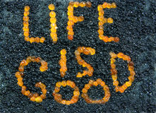 A vida é boa. Imagem de Stock Royalty Free