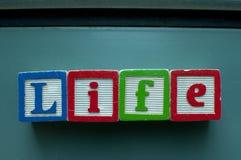 vida Imágenes de archivo libres de regalías