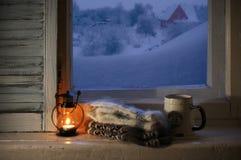 Vida acogedora del invierno aún Fotografía de archivo