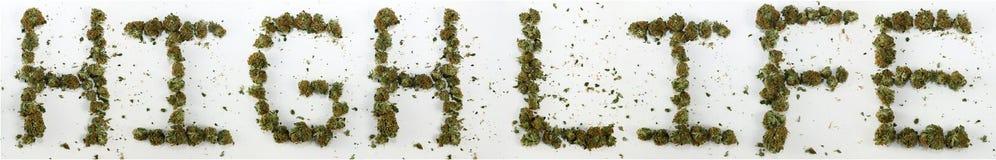 Vida alta soletrada com marijuana Fotografia de Stock