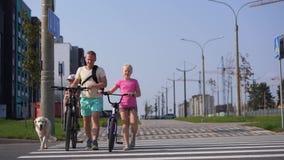 Vida con los animales domésticos en la ciudad moderna - familia con las bicis y un perro grande que cruza el camino metrajes