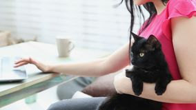 Vida con los animales domésticos la muchacha hermosa está trabajando en casa en un ordenador portátil con un gato negro en sus ma almacen de video