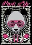 Vida cor-de-rosa Imagem de Stock Royalty Free