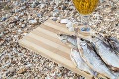 Vida culinaria de la cerveza marina aún Fotografía de archivo