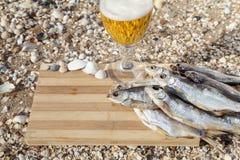Vida culinaria de la cerveza marina aún Foto de archivo libre de regalías