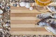 Vida culinaria de la cerveza marina aún Imagen de archivo libre de regalías