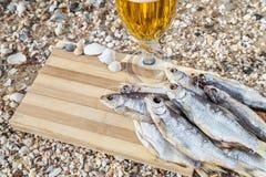 Vida culinaria de la cerveza marina aún Imágenes de archivo libres de regalías