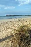 Vida da praia Imagem de Stock Royalty Free