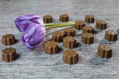 Vida de algunos todavía chocolates Foto de archivo