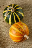 Vida de dois Gourds ainda Fotografia de Stock Royalty Free
